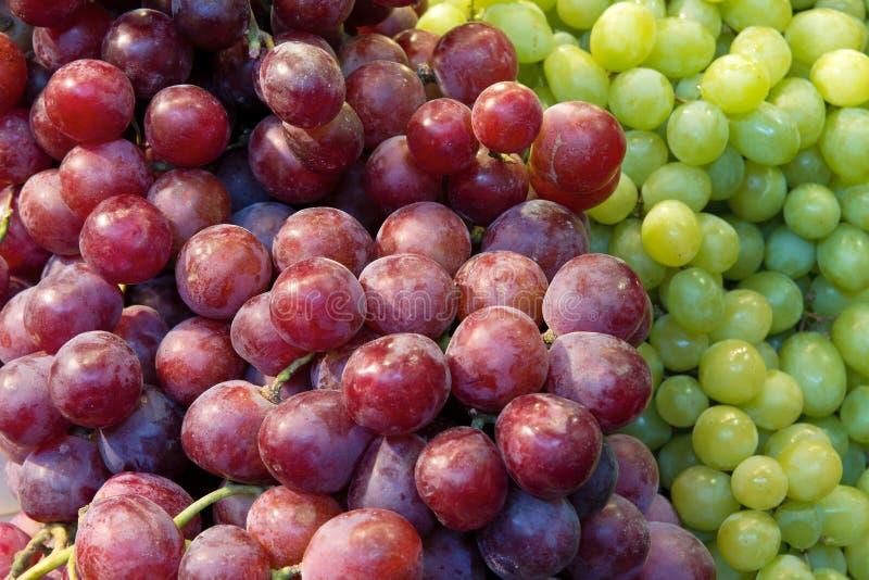 Close up vermelho e verde das uvas imagens de stock