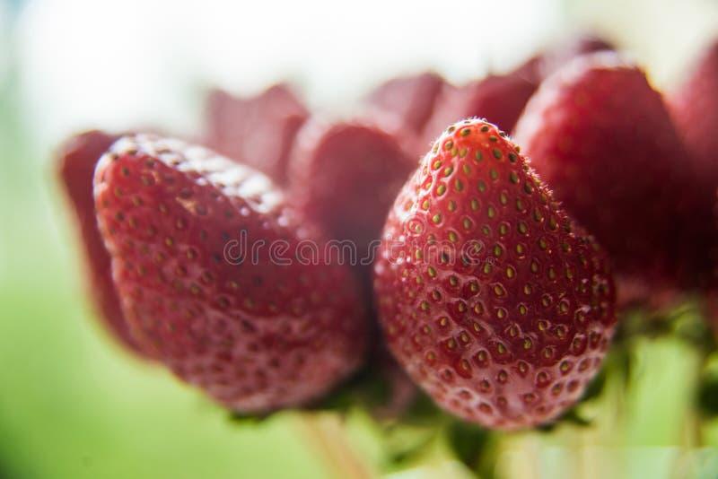 Close up vermelho saudável das morangos no fundo de outras morangos imagem de stock