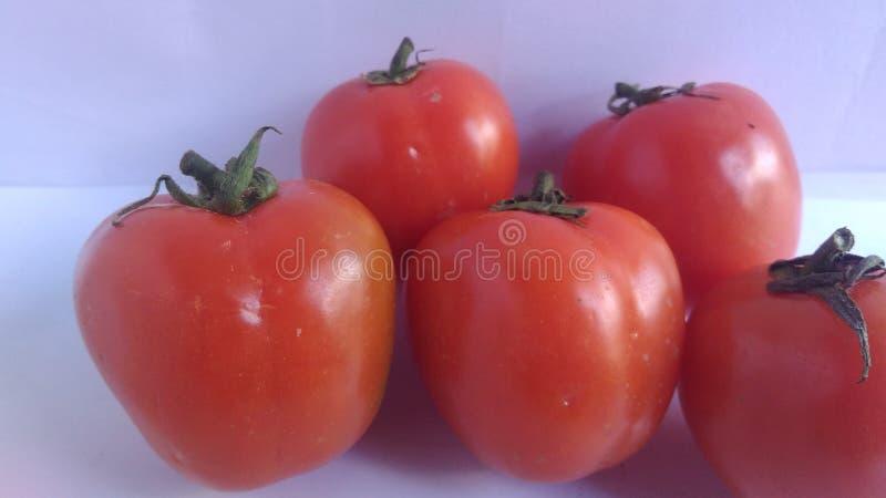 Close-up verse rode tomaten op de witte achtergrond royalty-vrije stock fotografie