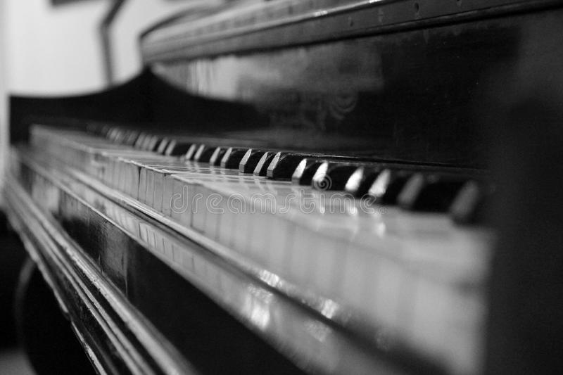 Close up view of black piano with white keys royalty free stock image