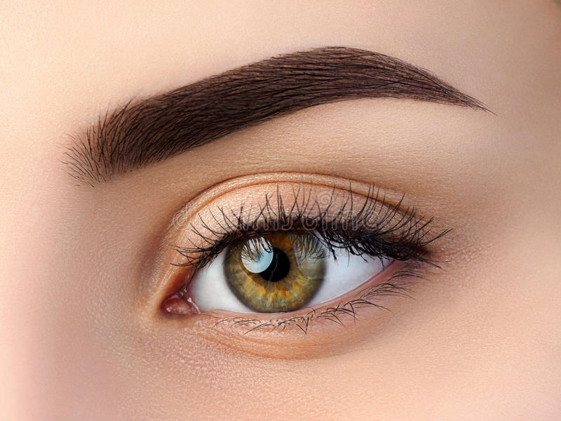 Close up view of beautiful brown female eye royalty free stock photos