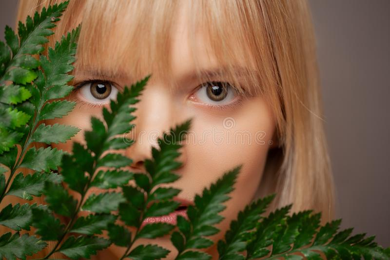 Close up view of beautiful woman, branch of a fern covers the face. Eye care, contact lenses and beauty. stock photography