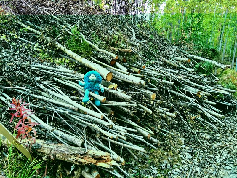 Smurf soft toy sitting on a heap of cut trees and branches royalty free stock photo
