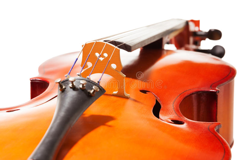 Close-up view of cello body on white background. Close-up view of cello body with bridge and F-holes on white background royalty free stock photo