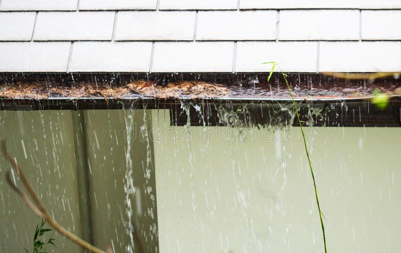 Close up view on clogged Rain Gutter in the rain. Home Guttering, Gutters. Close up of rain gutter clogged with dried fall leaves during the rain. Shingles and stock photo