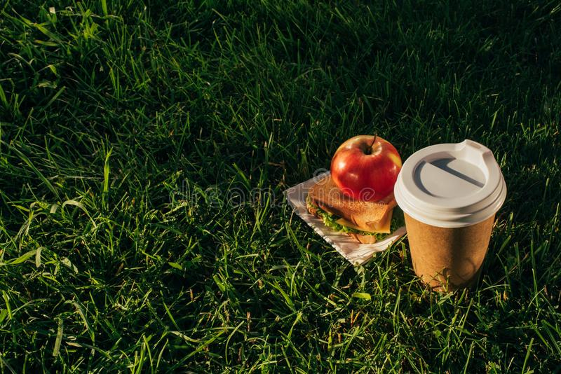 Close up view of coffee to go, sandwich and apple. On green grass royalty free stock images