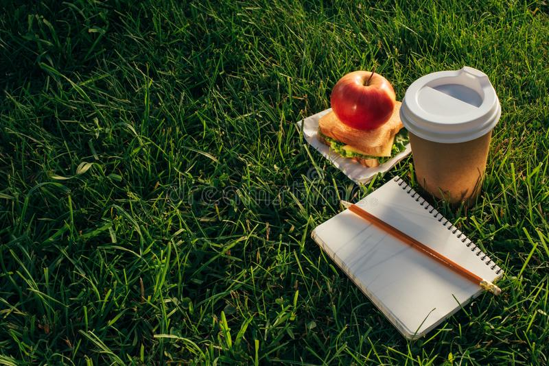 Close up view of coffee to go, sandwich, apple and notebook. On green grass stock images
