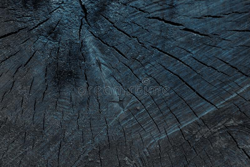 Close-up view of dark grey cracked wooden textured. Background royalty free stock photo
