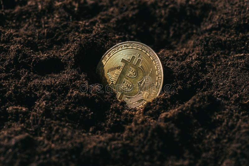 close up view of golden bitcoin stock photo