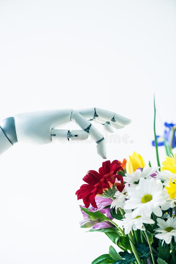 close-up view of hand of robot and beautiful flower bouquet royalty free stock photos