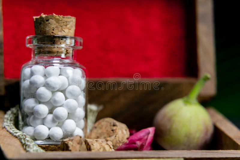 Close up view of homeopath white sugar ball medicine in wooden old box wild flower wild, fruit bud in dark background royalty free stock photos