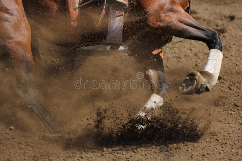 Download A Close Up View Of A Horse Galloping. Stock Image - Image of horseback, hoof: 45279667