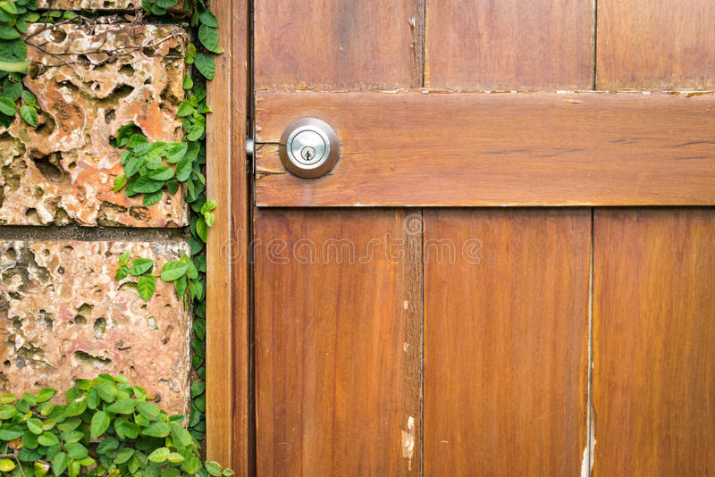 House in details: door and wall with green. stock image