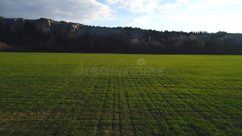 Close-up view of a large green field with high mountain cliff on the background against blue sky. Footage. Beautiful. Close-up view of a large green field with royalty free stock image