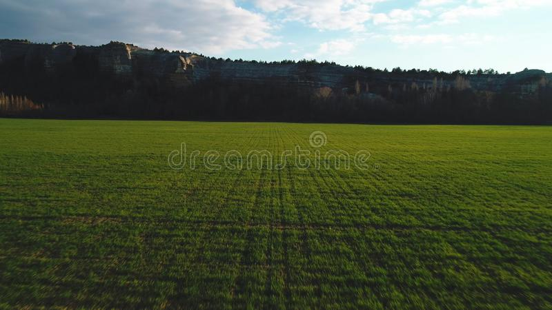 Close-up view of a large green field with high mountain cliff on the background against blue sky. Footage. Beautiful. Close-up view of a large green field with stock photography