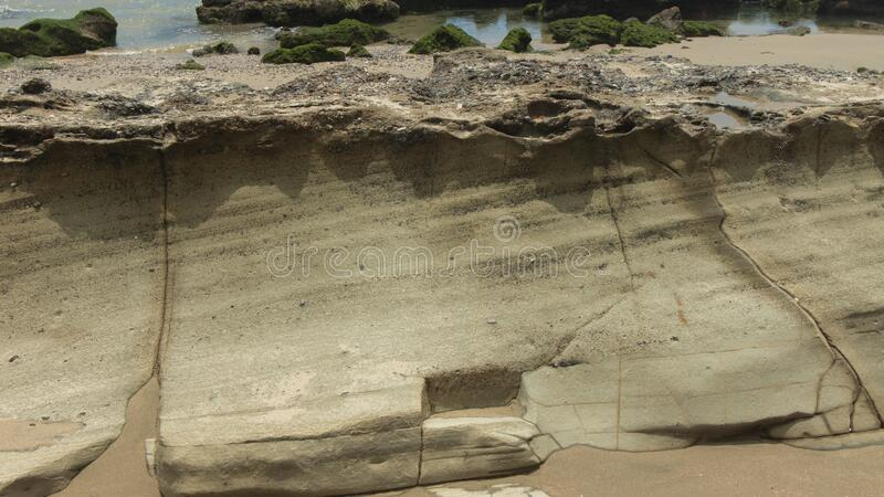 Close up view of the layers that form on a stone on the beach stock photo