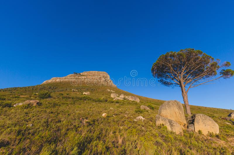 Close up view of Lion`s Head Mountain in Cape Town at sunrise stock photo