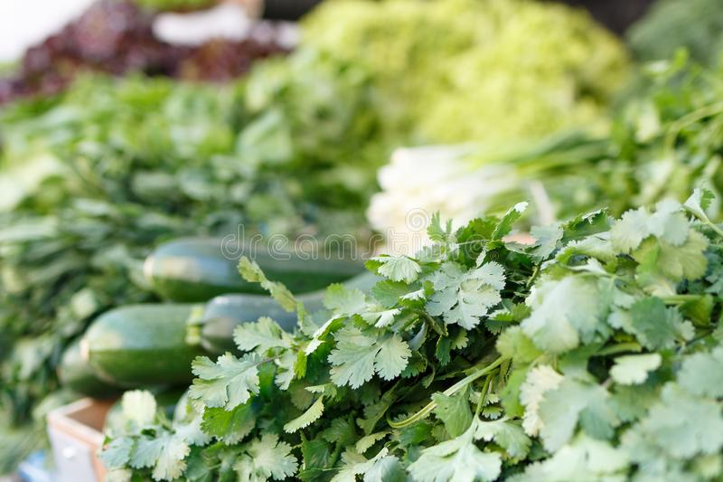 Close up view of lot of fresh organic vegetables, parsley, zucchini on local farmers market in Vilnius, Lithuiania. royalty free stock image