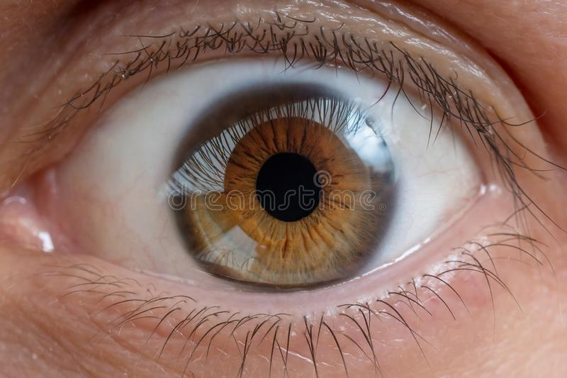 Close-up view on man`s eye. Close-up view on man`s eye stock photo