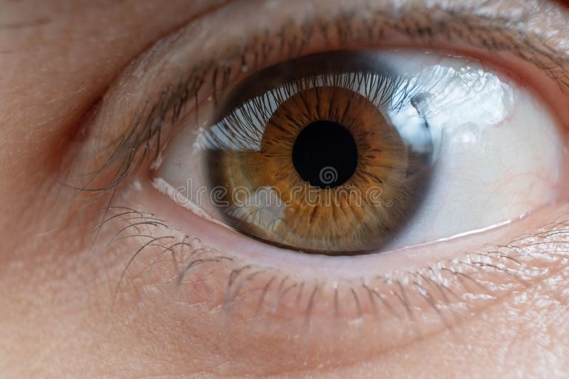 Close-up view on man`s eye. Close-up view on man`s eye royalty free stock photos