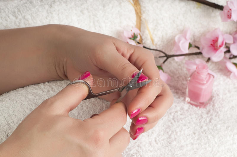 Download Nail treatment stock photo. Image of apply, studio, application - 29743114
