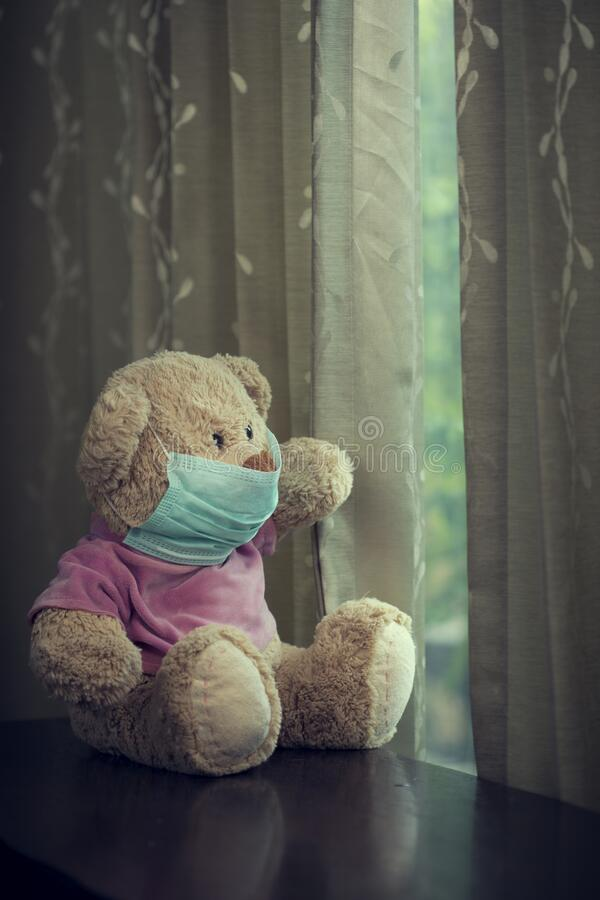 View oftoy dog and teddy bear with medial mask on its face stock photography
