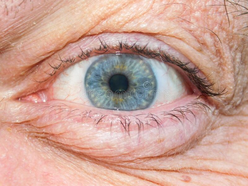 Older man`s blue eye with visible iris fibres. A close-up view of an older man`s blue coloured eye with visible iris fibres stock photos
