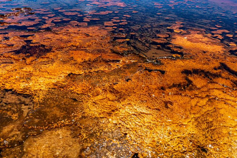 Close up view of the orange and yellow mineral deposits in the run off water at Biscuit Basin stock photos