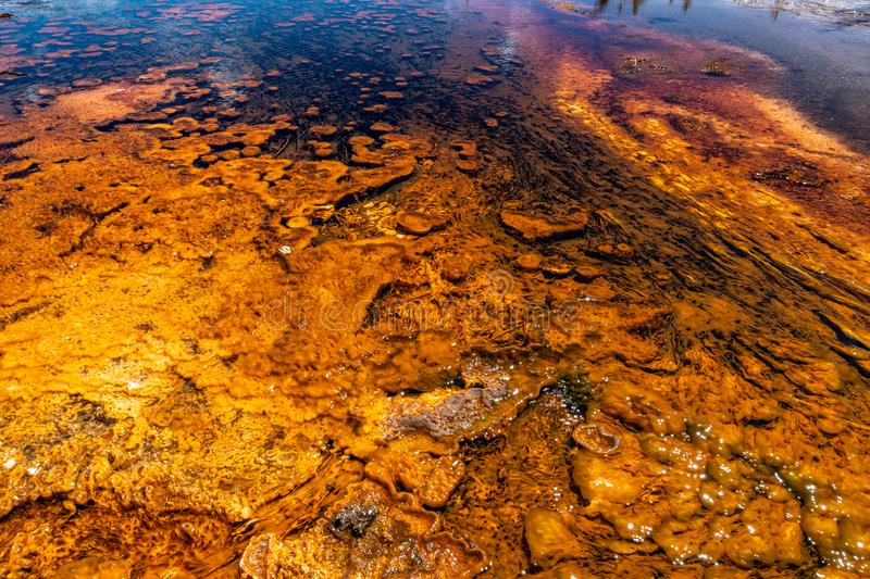 Close up view of the orange and yellow mineral deposits in the run off water at Biscuit Basin royalty free stock photos