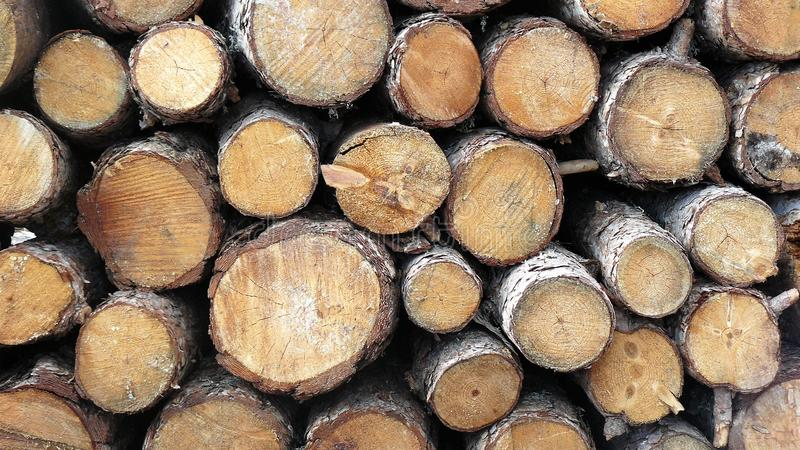 Pile of wooden natural sawn logs. Close-up view of a pile of natural cut wood pieces royalty free stock photography
