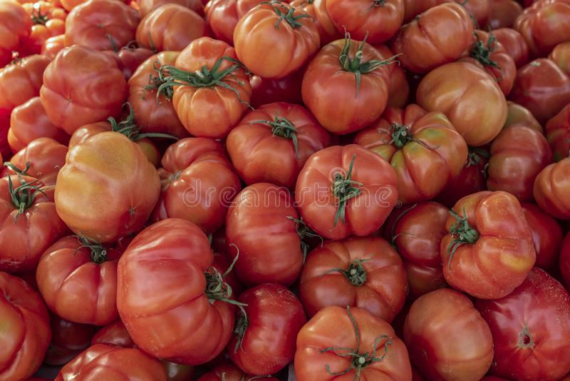Close up view of Ripe pink Raf tomato food background. Huge tomatoes on spanish weekly marketplace stock photo