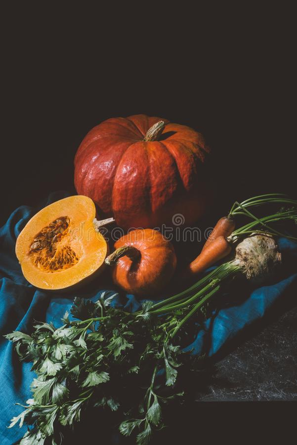 Autumn vegetables. Close-up view of ripe pumpkins, carrots and celery on cloth stock images