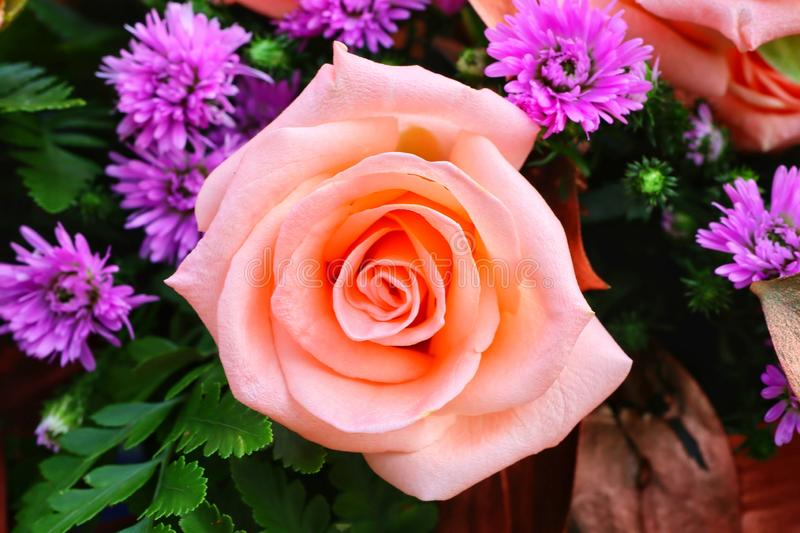 Close-up view, top view, rose, orange, beautiful pastel, bouquet of flowers. Greeen stock photos
