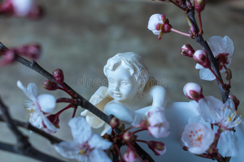 Close up view of a white vase with an angel figurine and spring tree branches on wooden background stock image