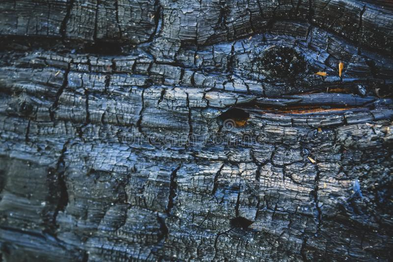 Close up view of wood charcoal background. Texture of charred wood. Carbonized wood texture close-up stock photo