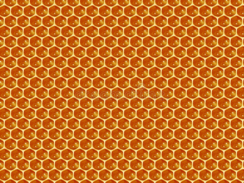 Close up view of the working bees on honey cells royalty free stock photo