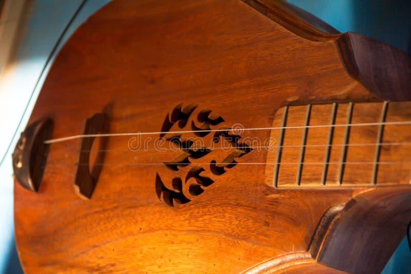 Close up vina royalty free stock image