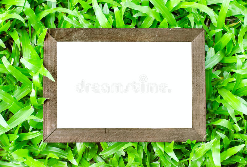 Close up of vintage wooden frame on green grass background royalty free stock photos