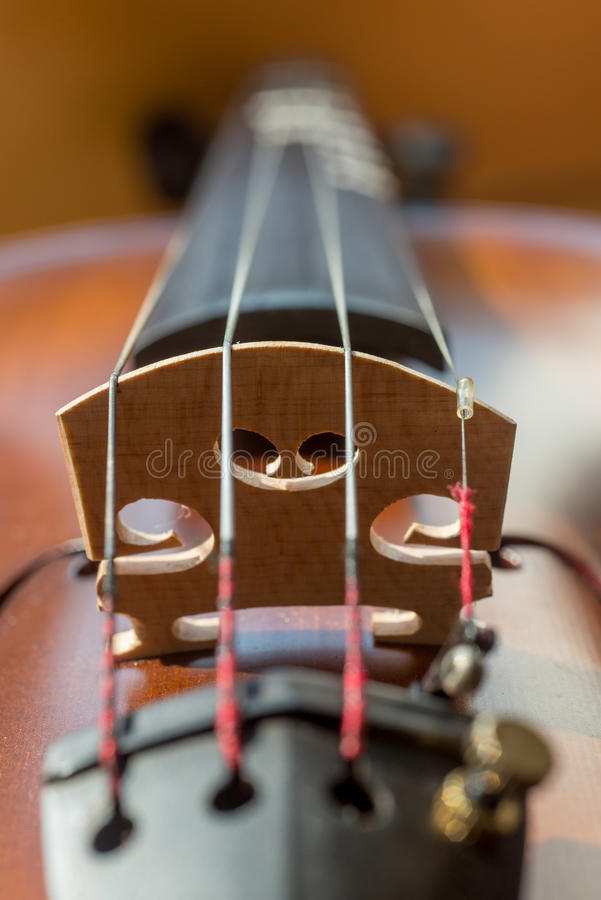 Close up of violin in vertical orientation. Close-up of the four strings of a violin, and the sound post, vertical orientation stock photography