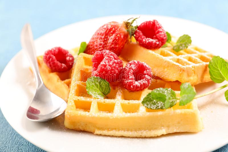 Waffles with berries fruits stock images