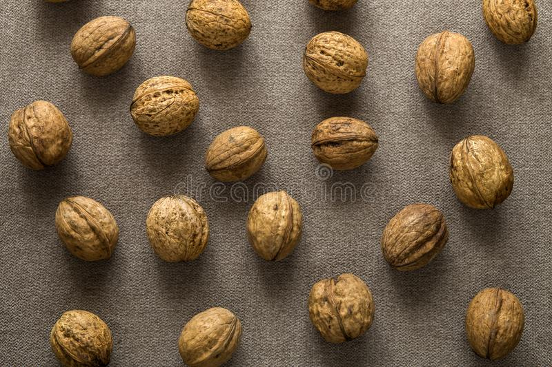 Close-up of walnuts in wooden shell isolated on light copy space background, top view. Healthy tasty organic food concept.  stock photos
