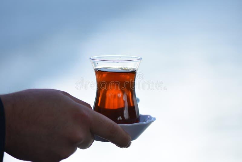Close up warm black tea. Tea cup hot background drink nature black closeup stock photography