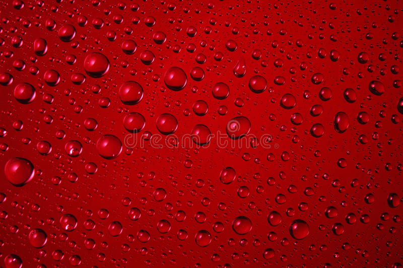 Close up of water drops on red background royalty free stock photo