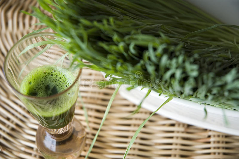 Close up wheatgrass juice. In shot glass royalty free stock photography