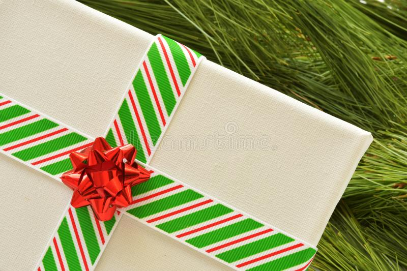 Close up of white canvas wrapped in Christmas ribbon, which is striped red, white and green, with red bow, on pine needles. stock images