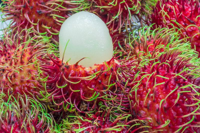 Close up of white pulp rambutan among red stock images