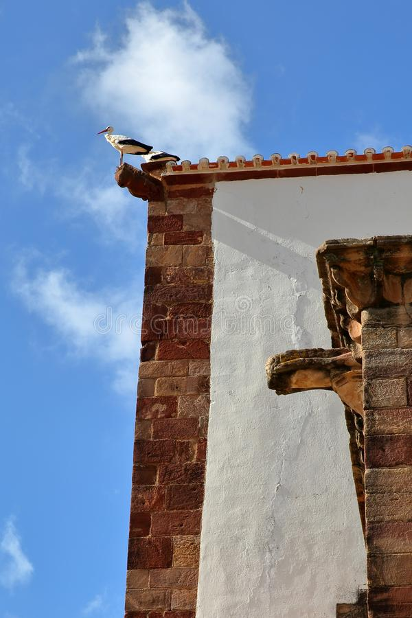 Close-up on white storks nesting at the top of the Cathedral of Silves, Algarve stock photos