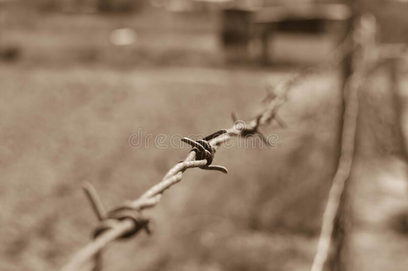 Close-up of Wire Against Blurred Background stock photography