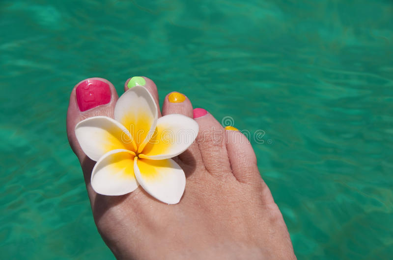 Close up on woman bare foot with frangipani flower, turquoise water. In the background stock image