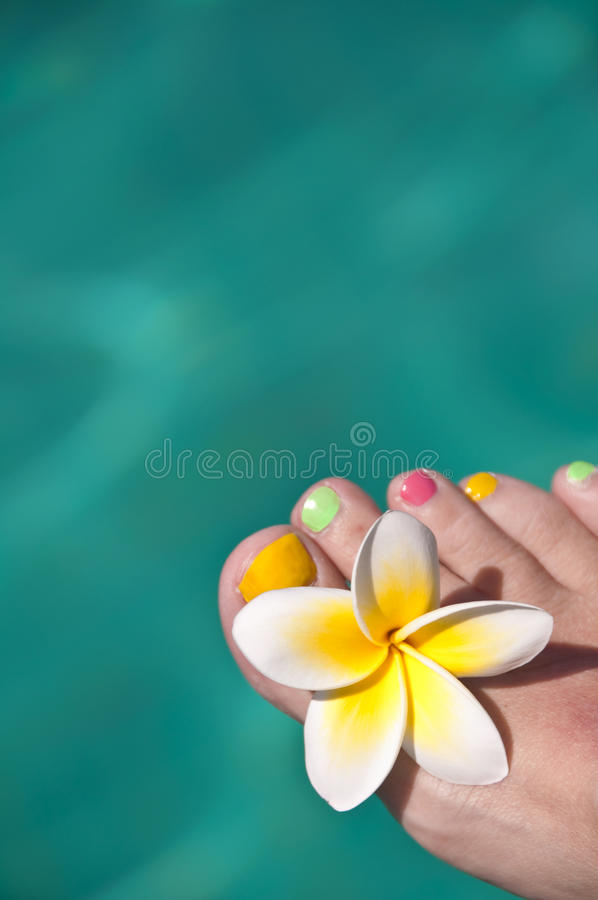 Close up on woman bare foot with frangipani flower, turquoise water. In the background stock photos